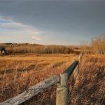 All Rural Properties & Land